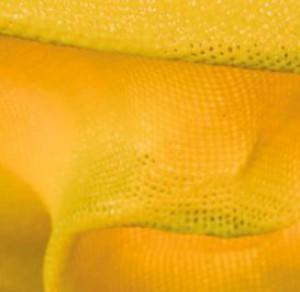 Tati lampa wisząca 1x23W E27 żółty