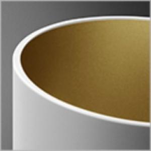 Pet Fine oprawa sufitowa biało-złota (mat) 1x50W GU10 230V