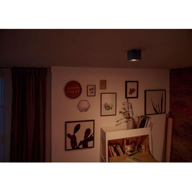 lampa sufitowa Box PHILIPS