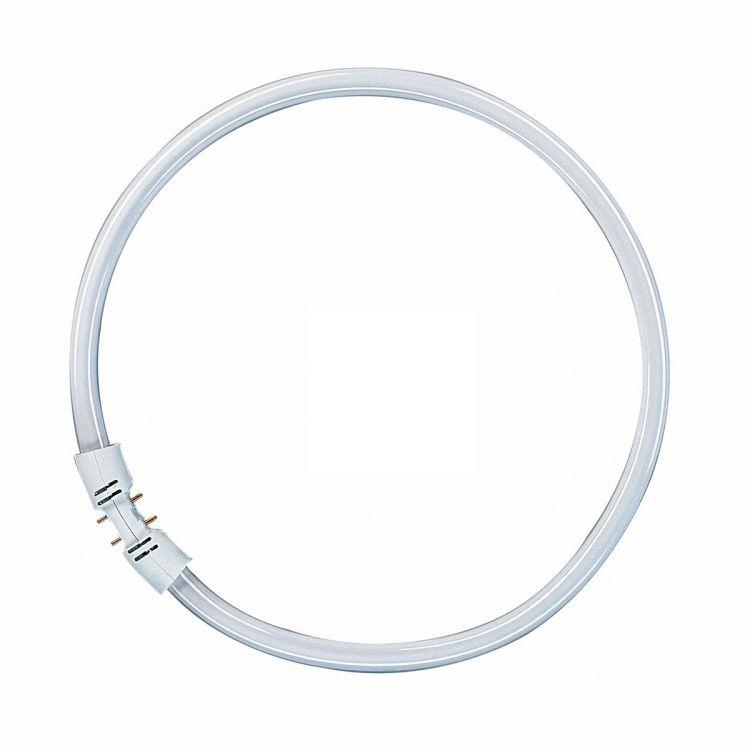 kołowa Świetlówka OSRAM