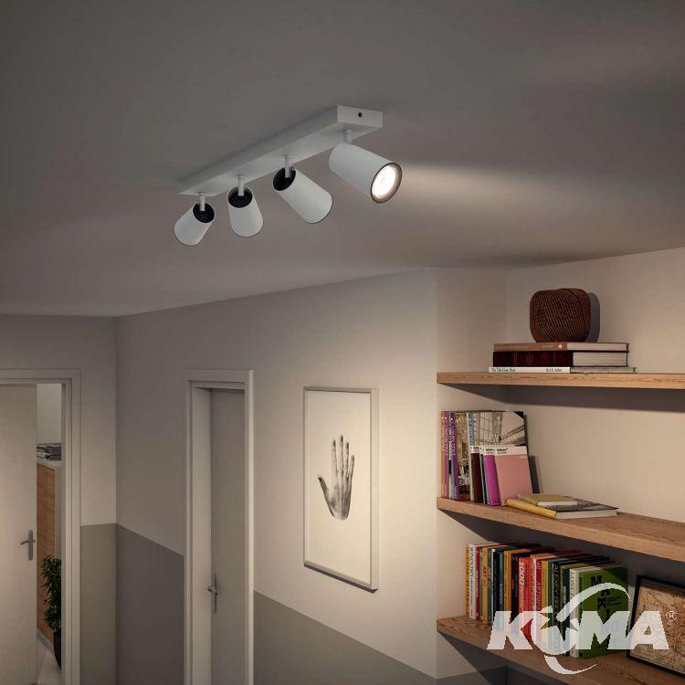 lampa sufitowa reflektor Paisley PHILIPS