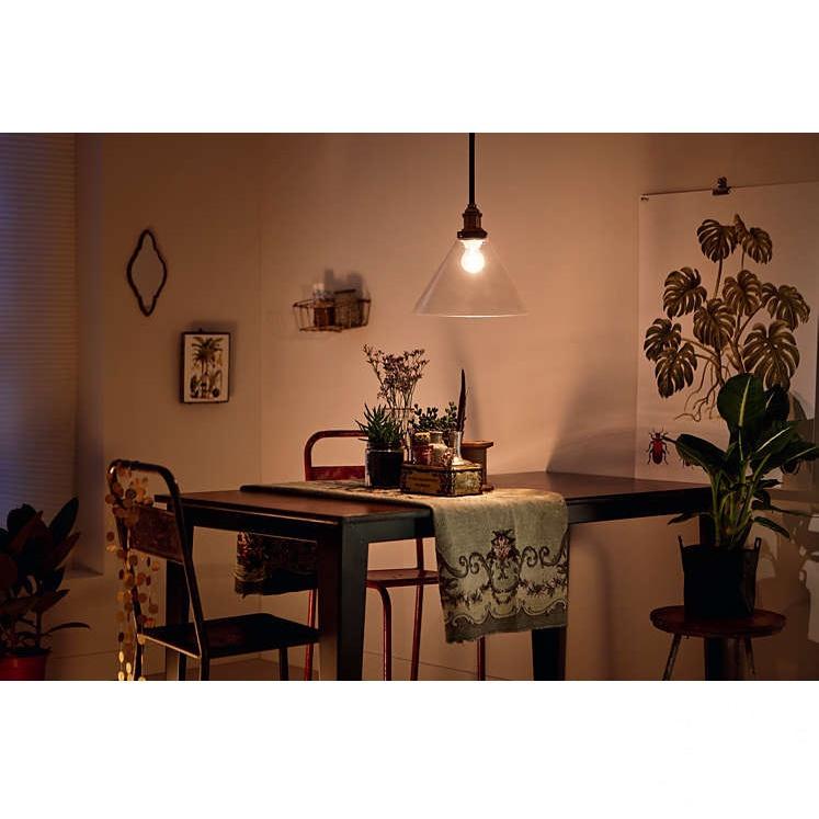 Westburry lampa wisząca 1x60W E27 230V transparentna
