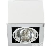 Box I oprawa sufitowa biała 1x50W AR111 12V