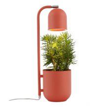Botanica lampa stojąca koralowa 1x9W led GU10