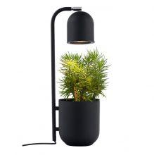Botanica lampa stojąca czarna 1x9W led GU10