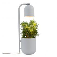 Botanica lampa stojąca szary 1x9W led GU10